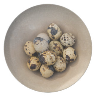 Quails eggs in a bowl plates