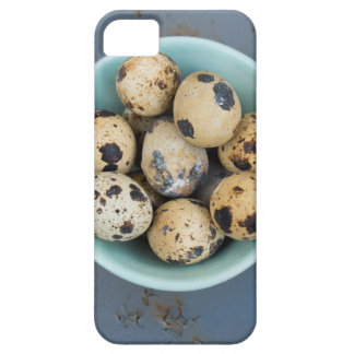 Quails eggs in a green bowl iPhone 5 covers