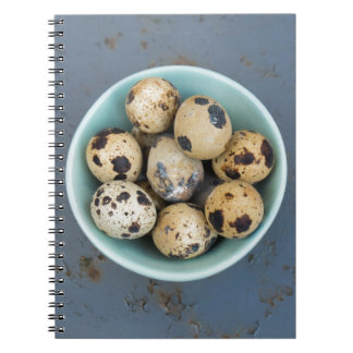 Quails eggs in a green bowl notebooks