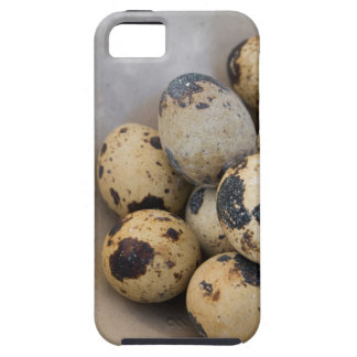 Quails eggs iPhone 5 case