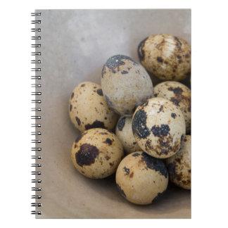Quails eggs notebooks