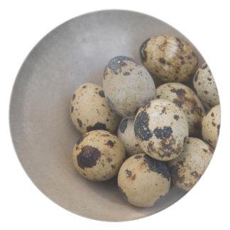 Quails eggs plate