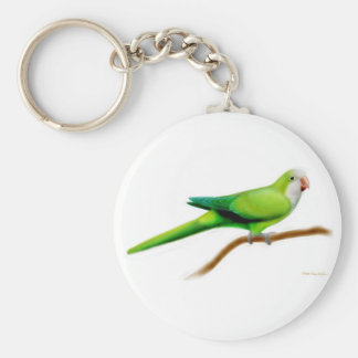 Quaker Monk Parakeet Keychain