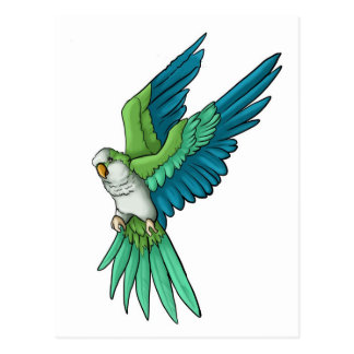 Quaker Parrot Products Postcard