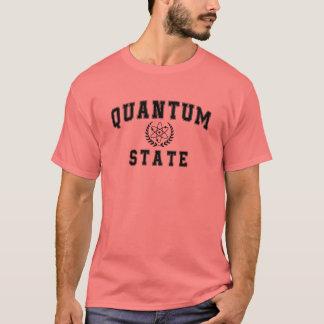 Quantum State T-Shirt