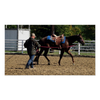 Quarter Horse Early Morning Warm Up Poster Print