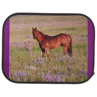 quarter horse in pasture in Montana July 2009 Car Mat