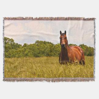 Quarter Horse Summer Time Throw Blanket
