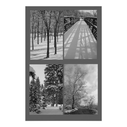 Quartet Black and White Nature Poster
