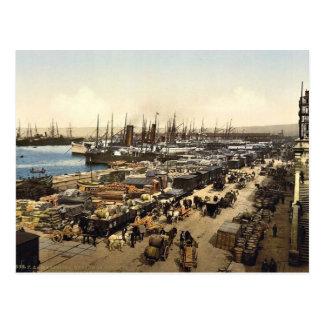 Quay de la Joliette, Marseilles, France classic Ph Postcard