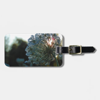 Queen Anne's Lace at Sunset Bag Tag