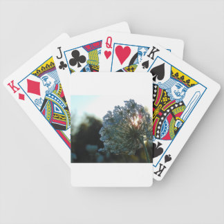 Queen Anne's Lace at Sunset Bicycle Playing Cards