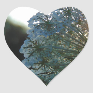 Queen Anne's Lace at Sunset Heart Sticker