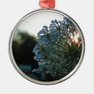 Queen Anne's Lace at Sunset Metal Ornament