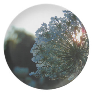 Queen Anne's Lace at Sunset Party Plates