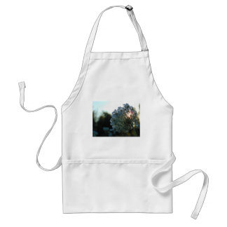 Queen Anne's Lace at Sunset Standard Apron