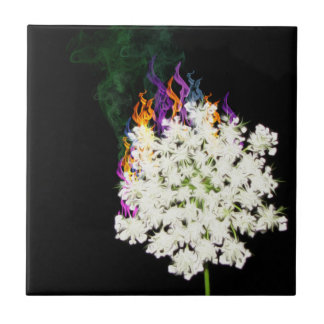Queen Anne's Lace Ceramic Tile