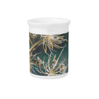 Queen Anne's Lace Close Up Beverage Pitcher