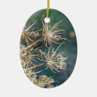 Queen Anne's Lace Close Up Ceramic Oval Ornament