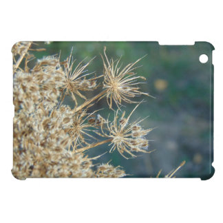 Queen Anne's Lace Close Up iPad Mini Covers