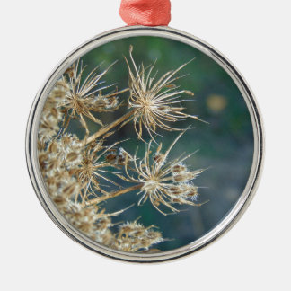 Queen Anne's Lace Close Up Metal Ornament