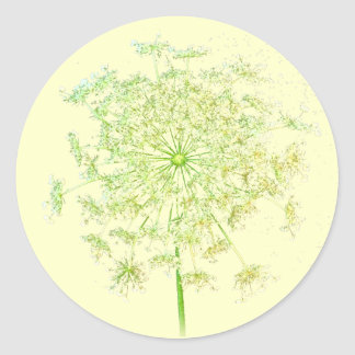 Queen Anne's Lace Gifts and Favors Classic Round Sticker