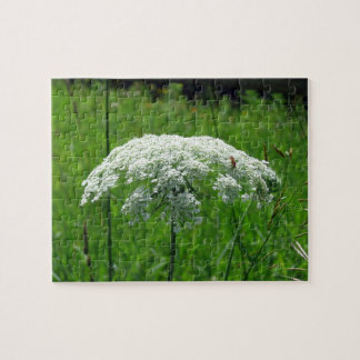 Queen Anne's Lace Jigsaw Puzzle