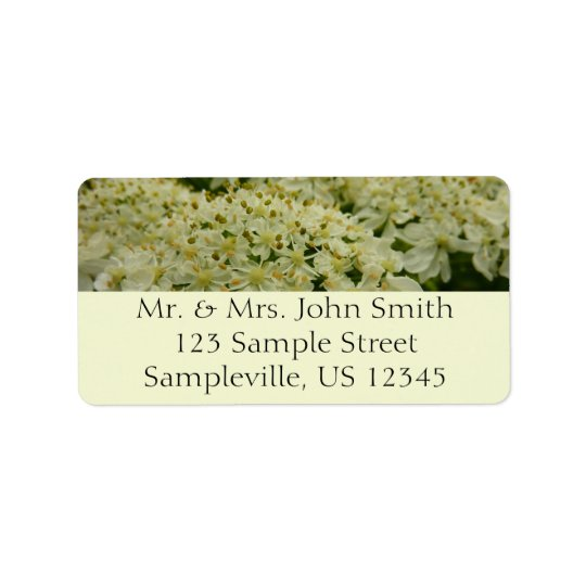 Queen Anne's Lace White Wildflower Label