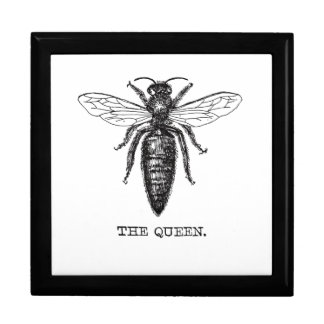 Queen Bee Drawing Vintage Black Gift Box