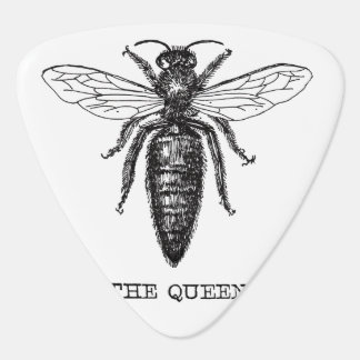 Queen Bee Drawing Vintage Black Guitar Pick