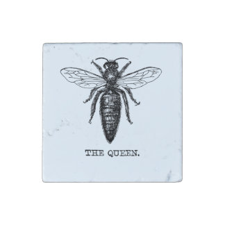 Queen Bee Drawing Vintage Black Stone Magnets