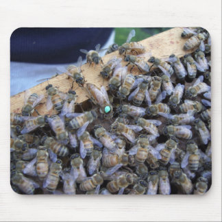 Queen bee mousepad