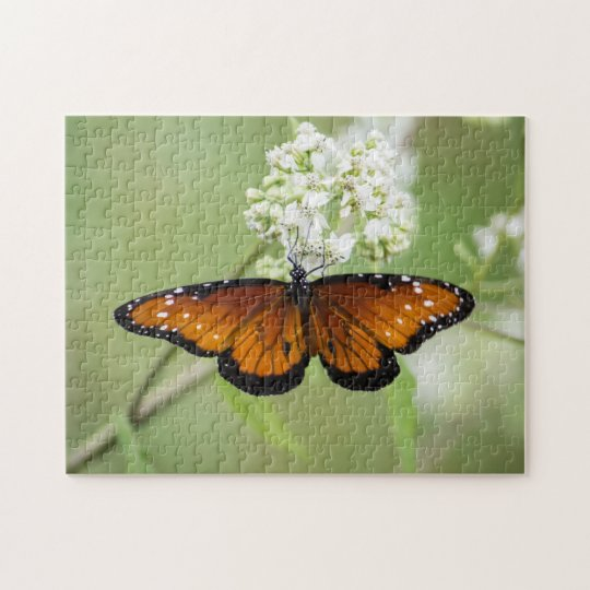 Queen Butterfly Finds a Meal Jigsaw Puzzle