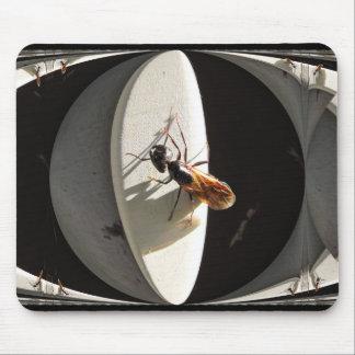 Queen Carpenter Ant ~ mousepad