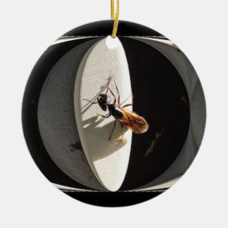 Queen Carpenter Ant ~ ornament