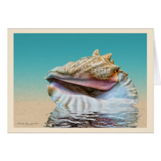 Queen Conch Sea Shell Ocean Blue Card