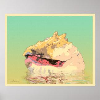 Queen Conch Sea Shell on Aqua Poster