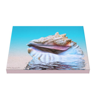 Queen Conch Sea Shell Pink and Turquoise Canvas Print