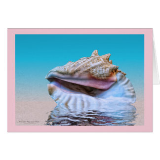 Queen Conch Sea Shell Pink Border Card