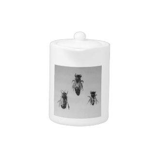 Queen Drone Worker Bee Keeping Apiology Apiarist