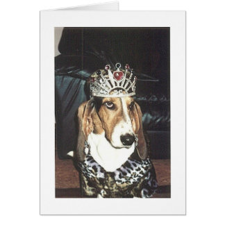 Queen of the Basset Hounds Card