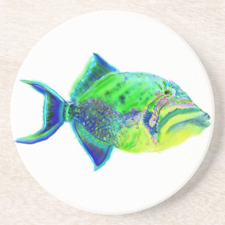 Queen Triggerfish Coaster