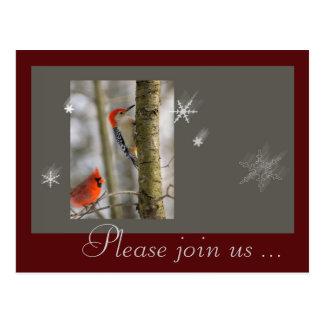 Quéquette en bois cardinale d oiseaux gris rouges carte postale