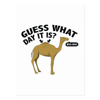 Quess What Day It Is? Post Card