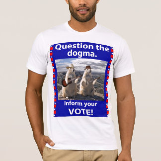 Question The Dogma shirt