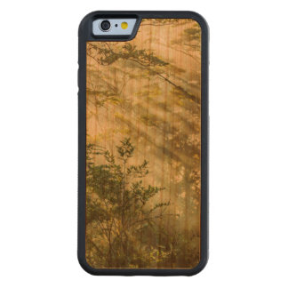 Queulat Park, Patagonia Forest Landscape, Aysen, Carved Cherry iPhone 6 Bumper Case