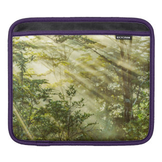 Queulat Park, Patagonia Forest Landscape, Aysen, iPad Sleeve
