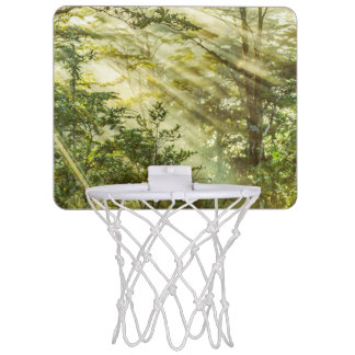 Queulat Park, Patagonia Forest Landscape, Aysen, Mini Basketball Hoop