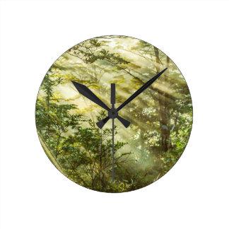 Queulat Park, Patagonia Forest Landscape, Aysen, Round Clock