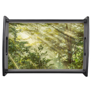 Queulat Park, Patagonia Forest Landscape, Aysen, Serving Tray